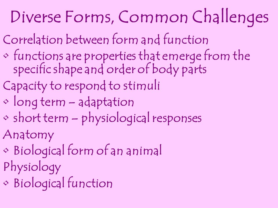 Diverse Forms, Common Challenges