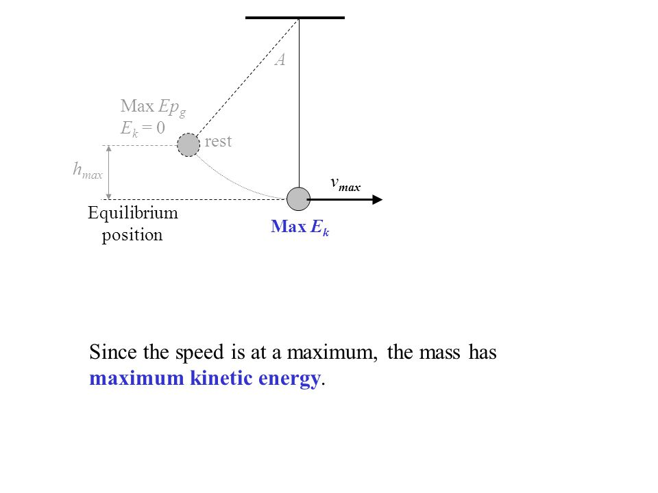 Since the speed is at a maximum, the mass has maximum kinetic energy.
