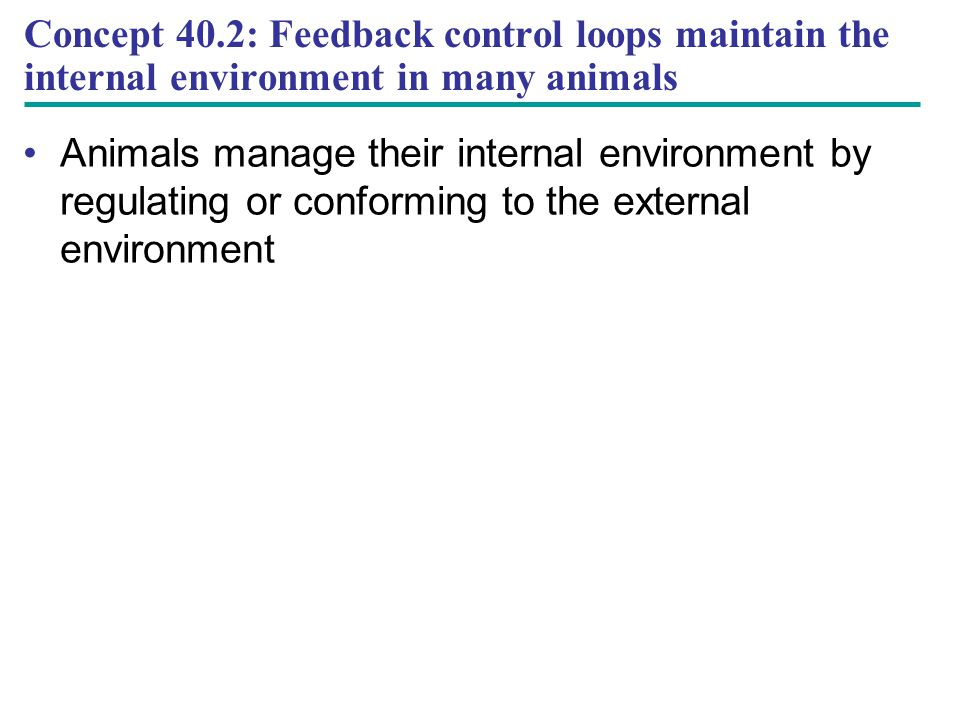 Concept 40.2: Feedback control loops maintain the internal environment in many animals