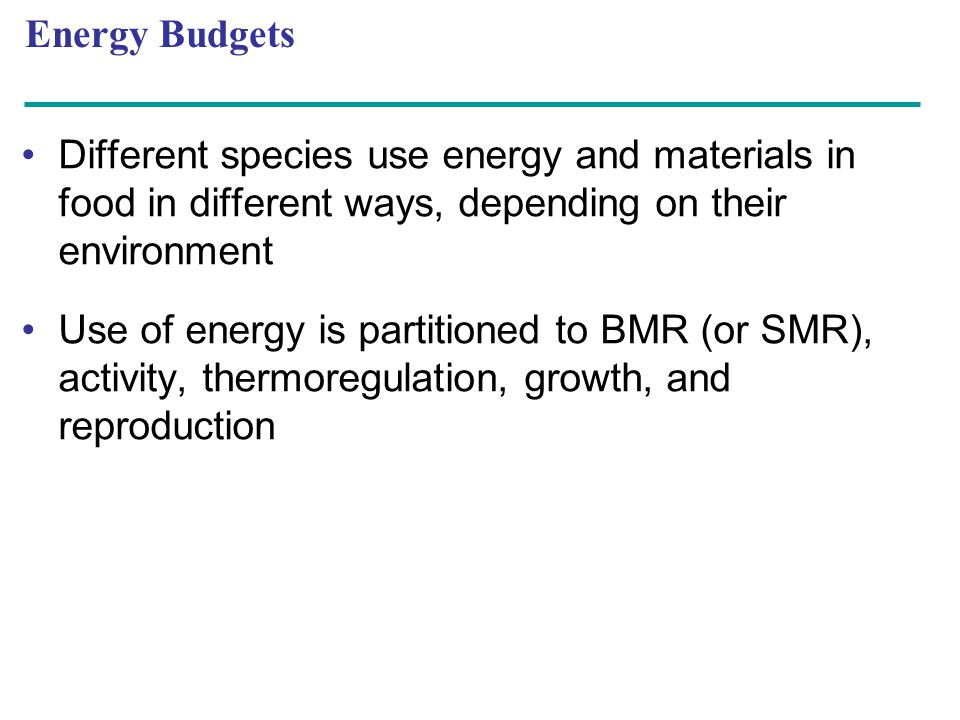 Energy Budgets Different species use energy and materials in food in different ways, depending on their environment.