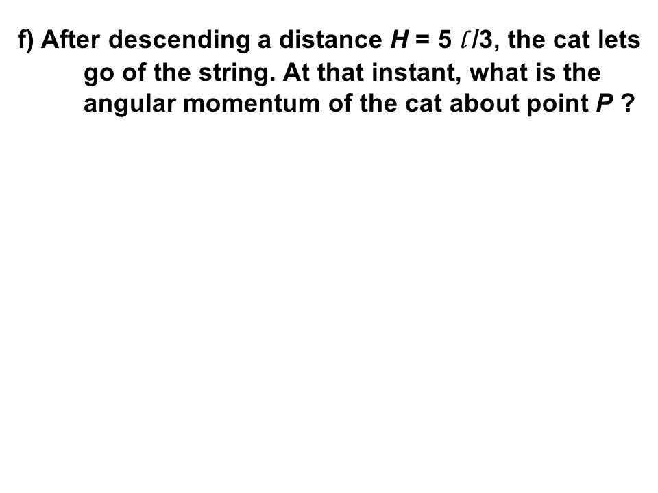 f) After descending a distance H = 5 l /3, the cat lets