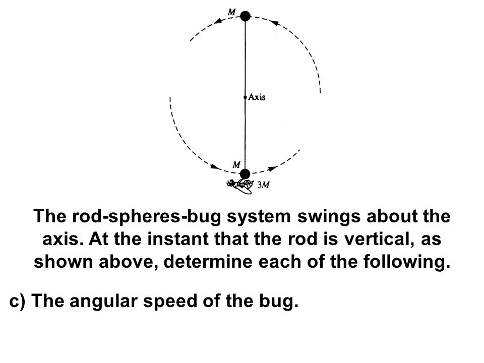 The rod-spheres-bug system swings about the axis