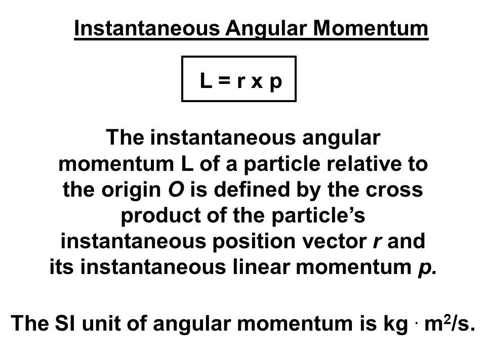 Instantaneous Angular Momentum