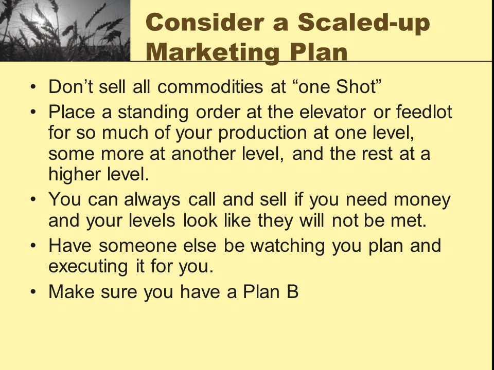 Consider a Scaled-up Marketing Plan