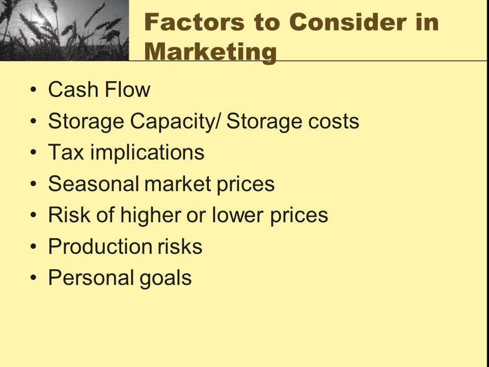 Factors to Consider in Marketing