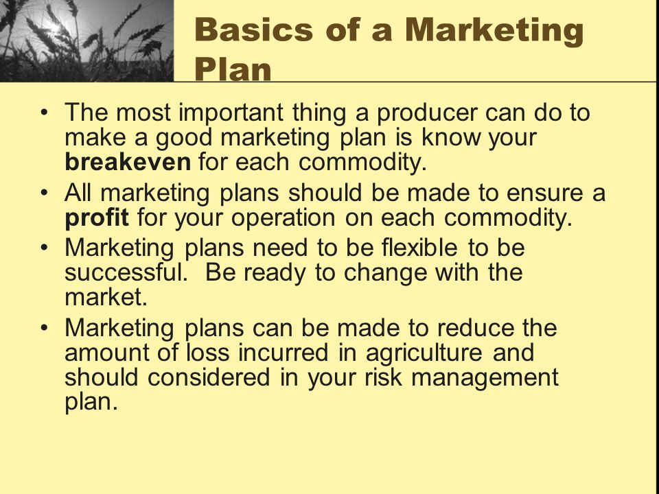 Basics of a Marketing Plan