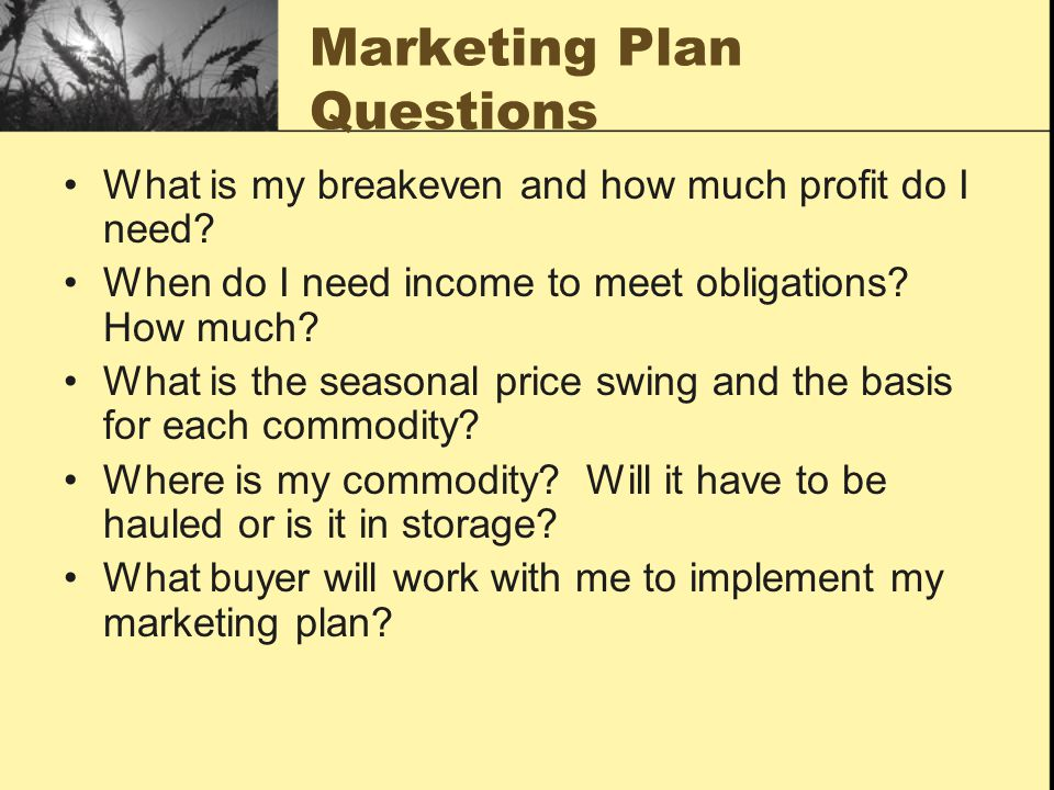 Marketing Plan Questions