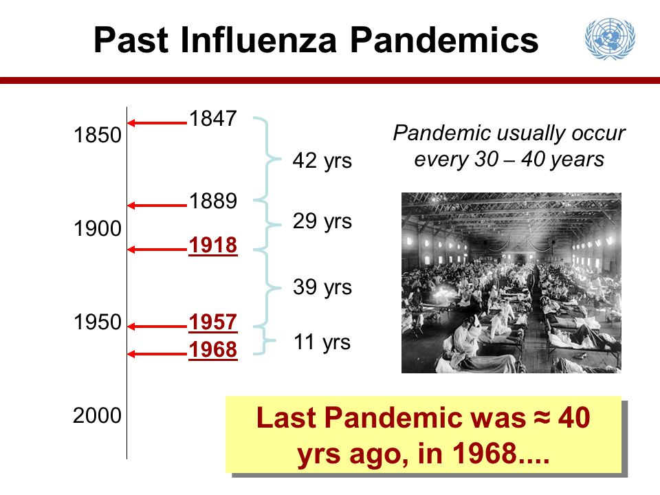 Past Influenza Pandemics Last Pandemic was ≈ 40 yrs ago, in 1968....