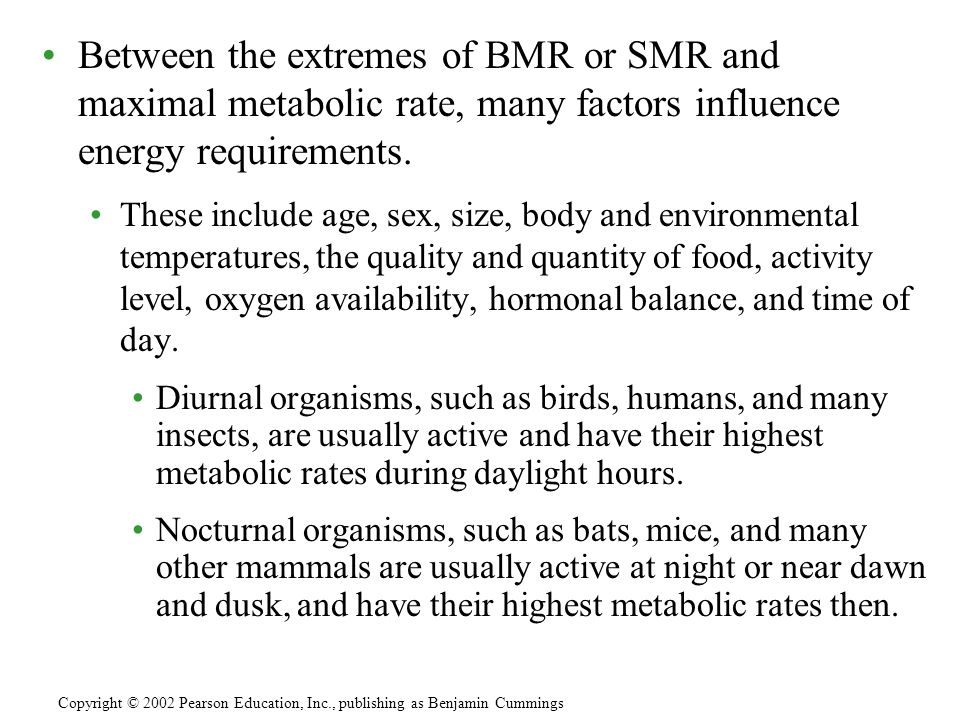 Between the extremes of BMR or SMR and maximal metabolic rate, many factors influence energy requirements.