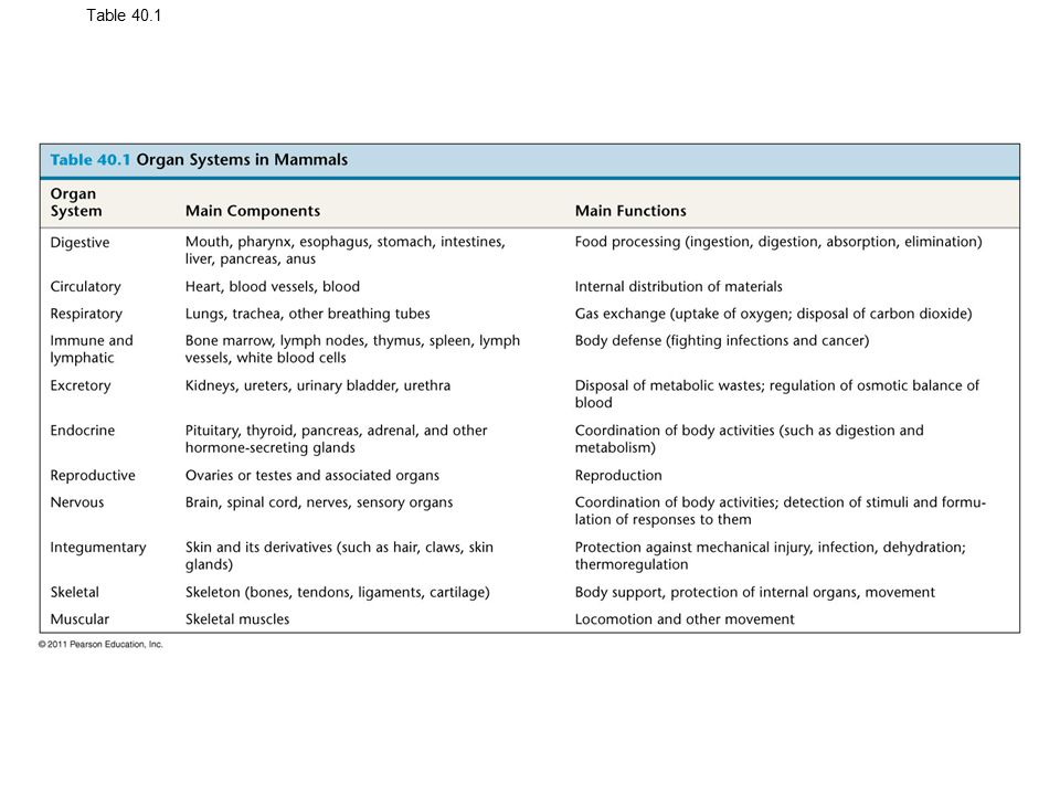 Table 40.1 Organ Systems in Mammals