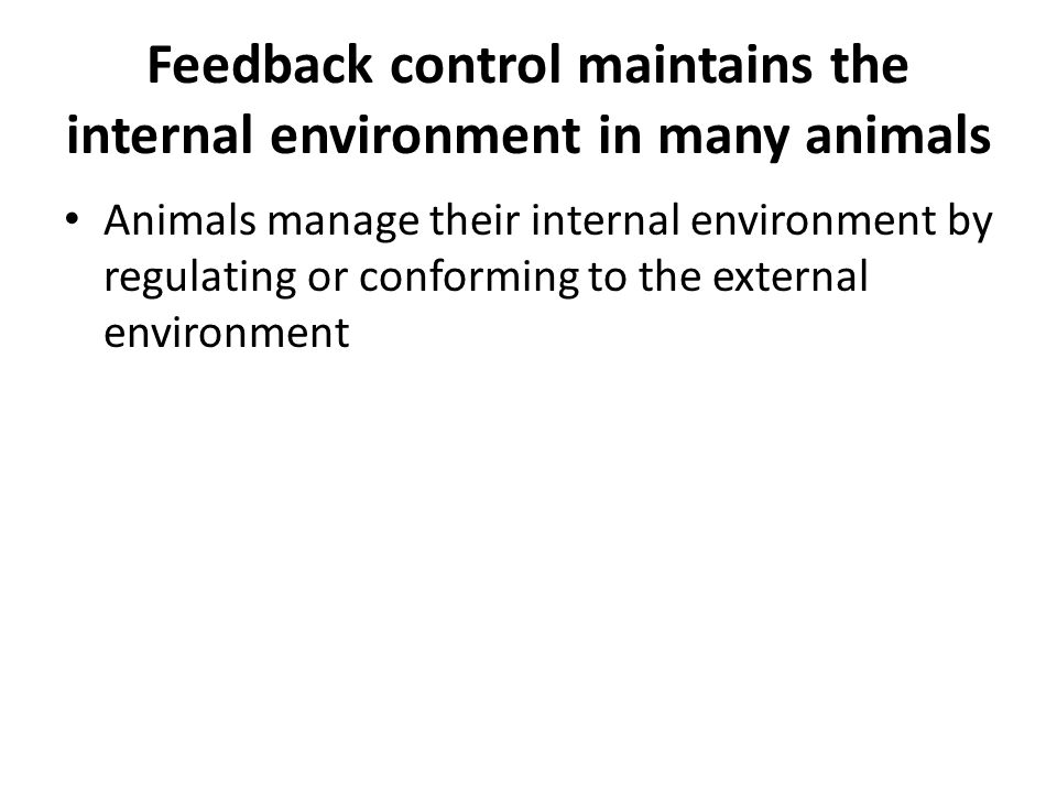 Feedback control maintains the internal environment in many animals