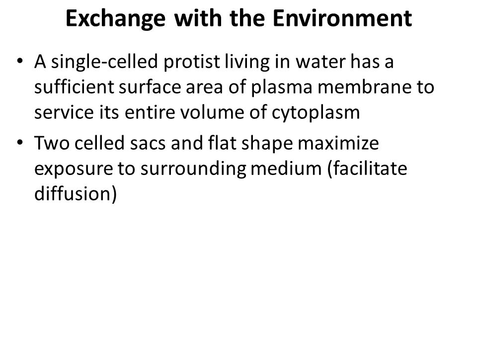 Exchange with the Environment