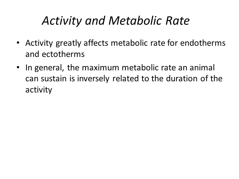 Activity and Metabolic Rate