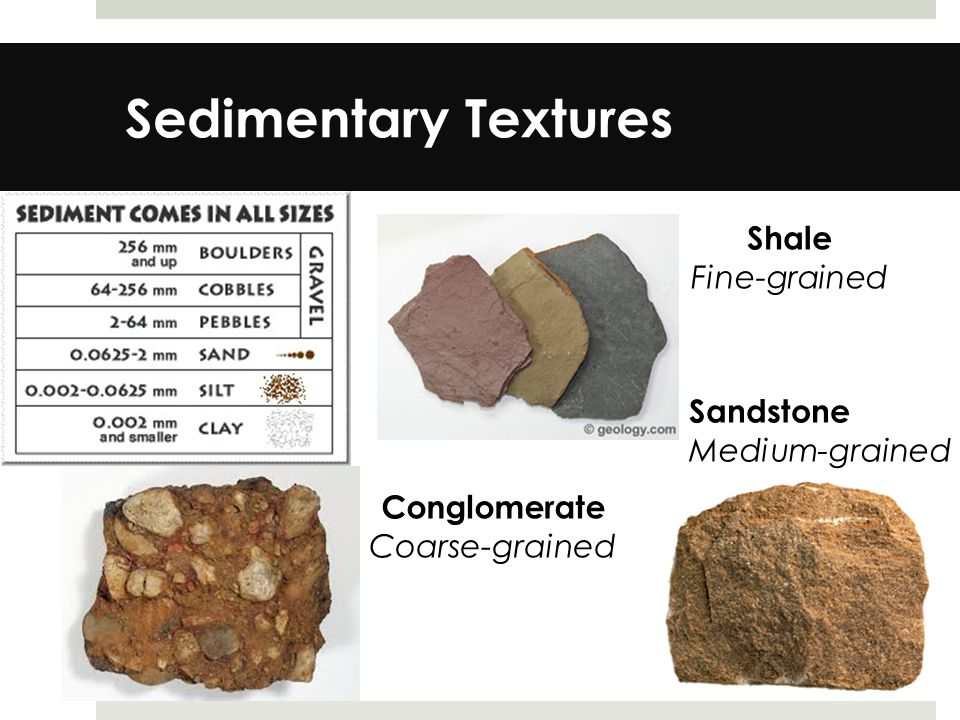 Sedimentary Textures Shale Fine-grained Sandstone Medium-grained