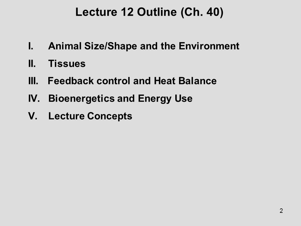 Lecture 12 Outline (Ch. 40) I. Animal Size/Shape and the Environment