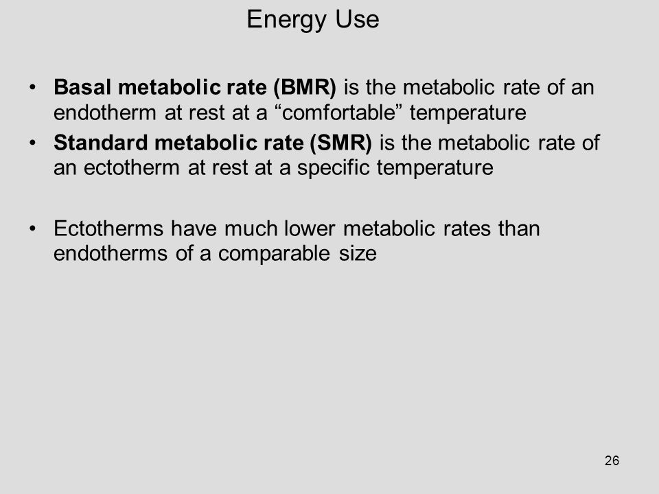 Energy Use Basal metabolic rate (BMR) is the metabolic rate of an endotherm at rest at a comfortable temperature.