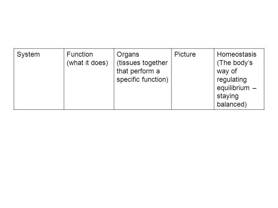 System Function (what it does) Organs. (tissues together that perform a specific function) Picture.