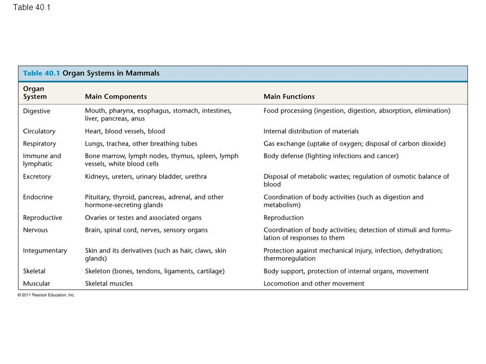 Table 40.1 Table 40.1 Organ Systems in Mammals 12
