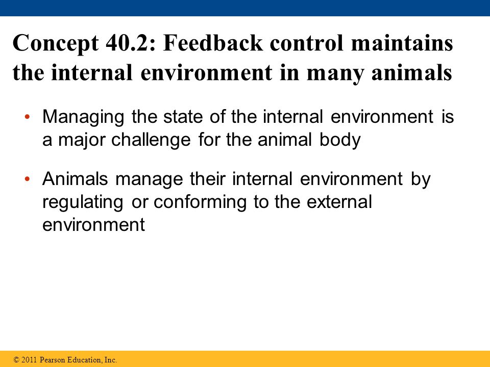 Concept 40.2: Feedback control maintains the internal environment in many animals