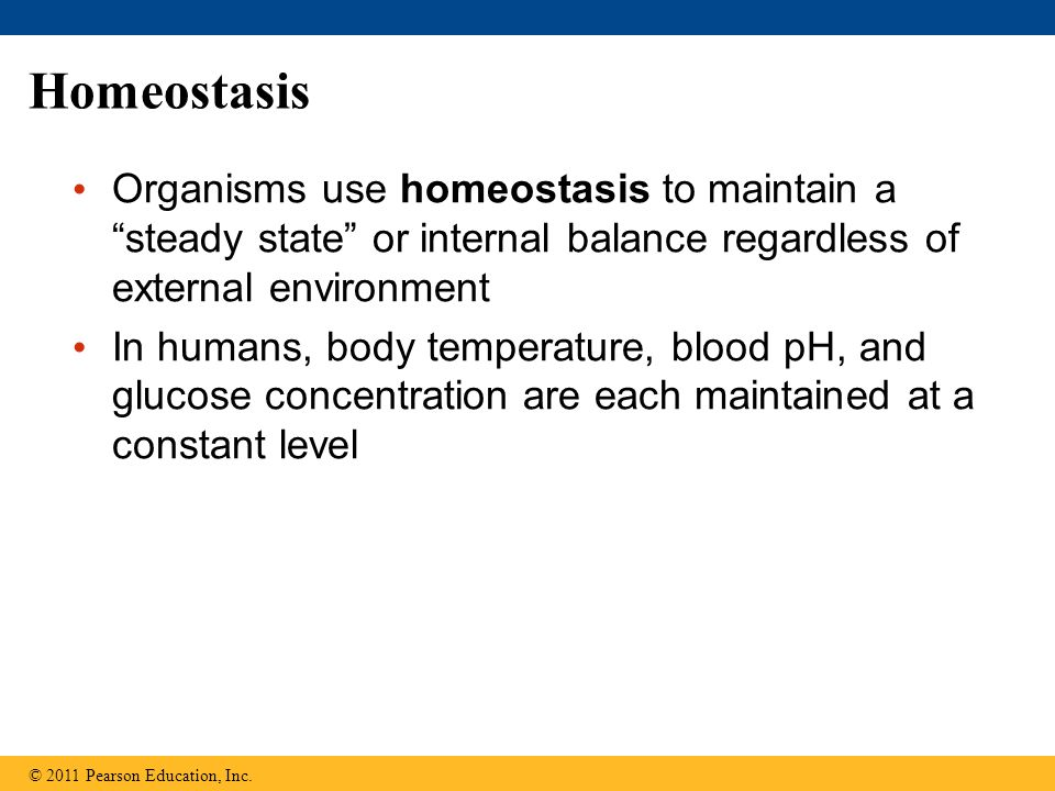 Homeostasis Organisms use homeostasis to maintain a steady state or internal balance regardless of external environment.
