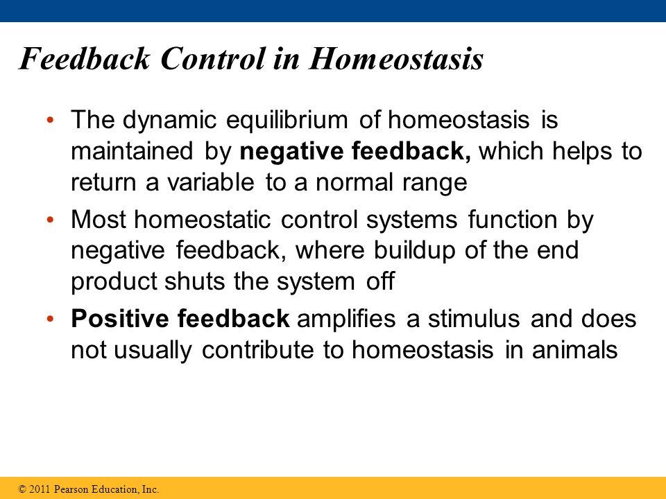 Feedback Control in Homeostasis