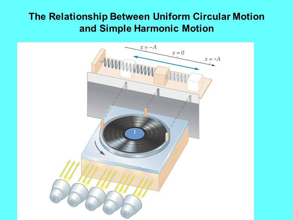 The Relationship Between Uniform Circular Motion and Simple Harmonic Motion