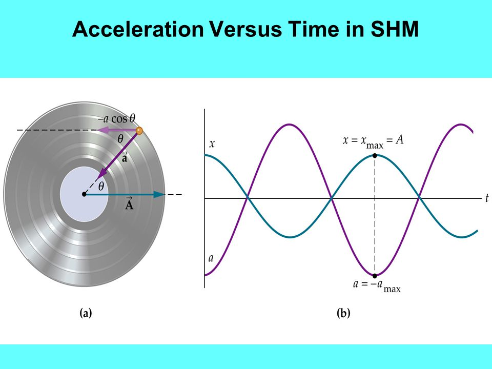Acceleration Versus Time in SHM