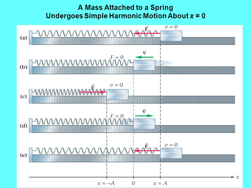 A Mass Attached to a Spring Undergoes Simple Harmonic Motion About x = 0