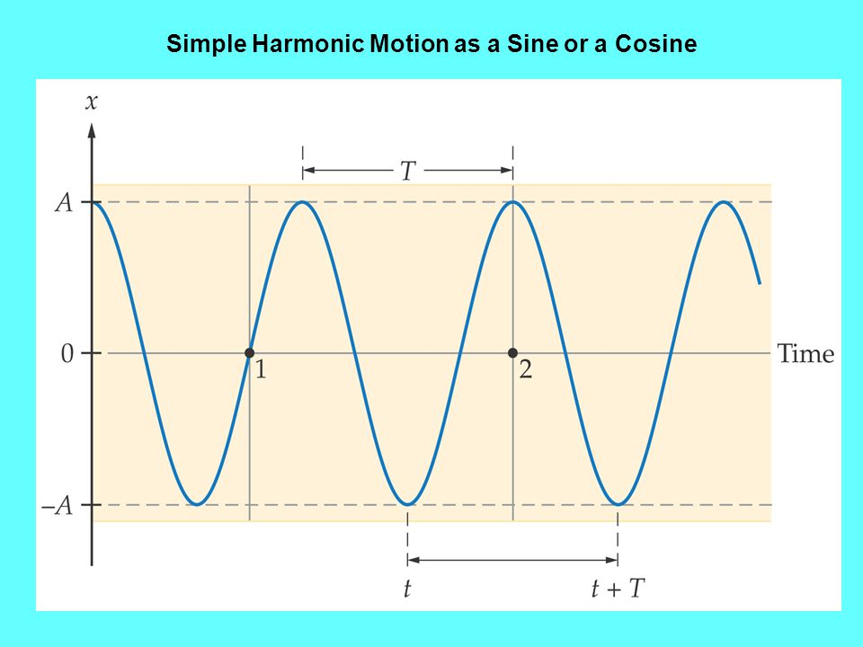 Simple Harmonic Motion as a Sine or a Cosine