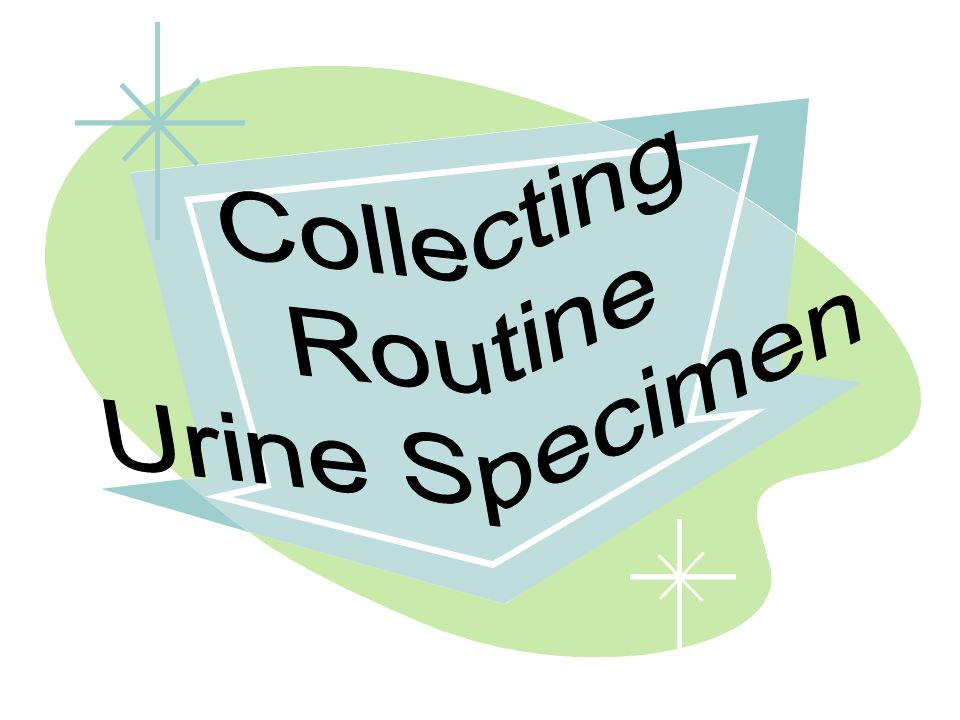 Collecting Routine Urine Specimen