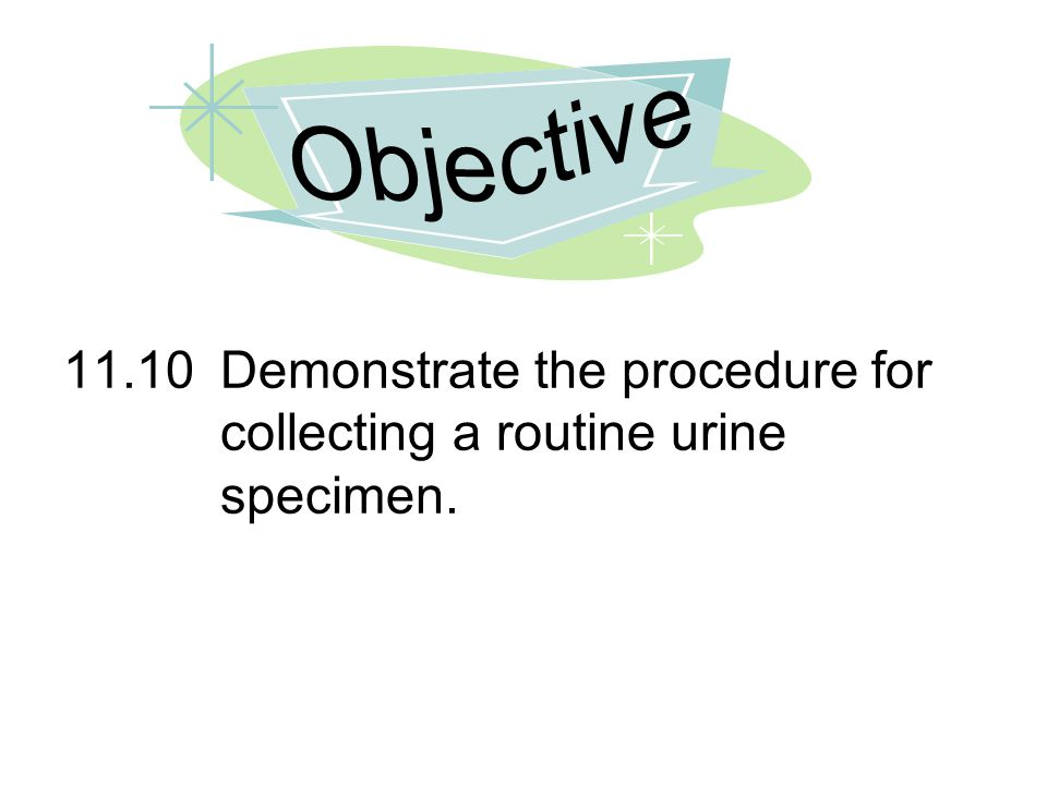 Objective 11.10 Demonstrate the procedure for collecting a routine urine specimen.