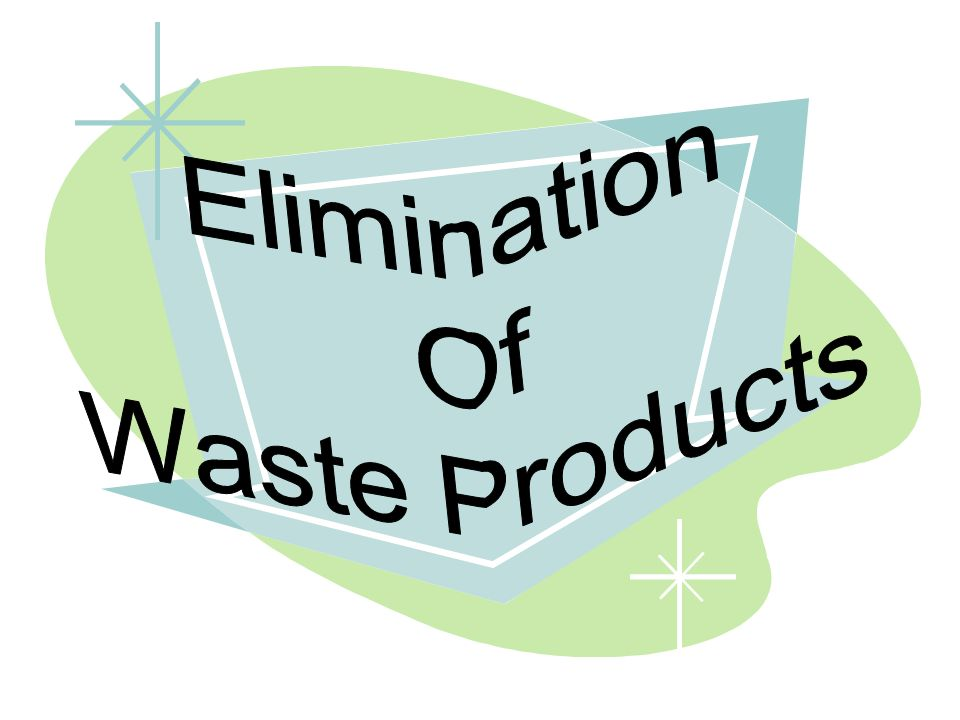 Elimination Of Waste Products