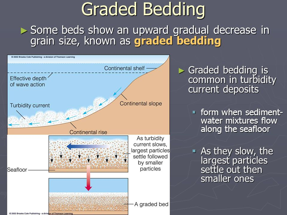 Graded Bedding Some beds show an upward gradual decrease in grain size, known as graded bedding.