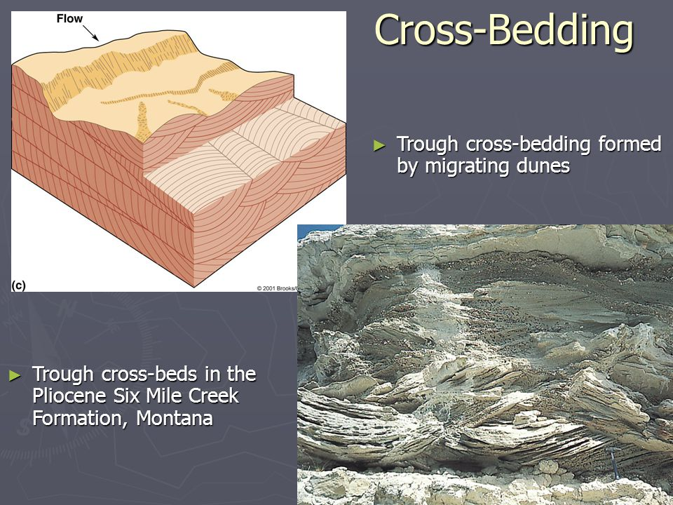 Cross-Bedding Trough cross-bedding formed by migrating dunes