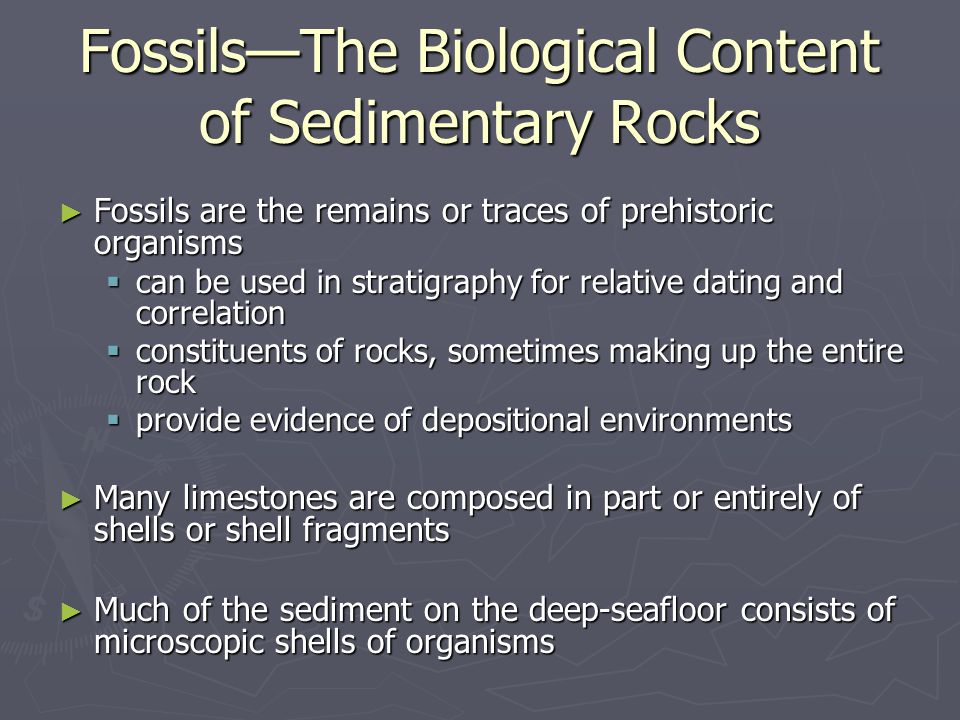 Fossils—The Biological Content of Sedimentary Rocks