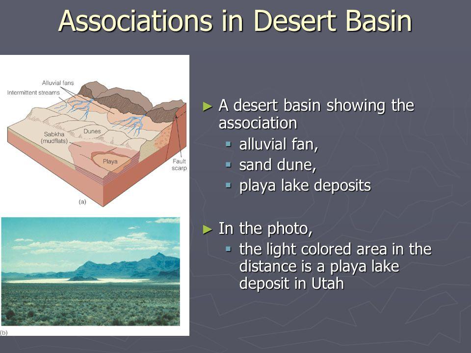 Associations in Desert Basin