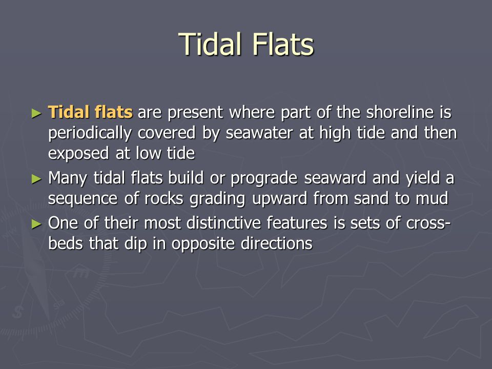 Tidal Flats Tidal flats are present where part of the shoreline is periodically covered by seawater at high tide and then exposed at low tide.