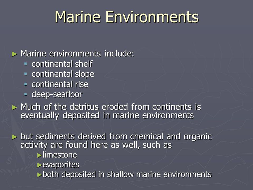 Marine Environments Marine environments include: