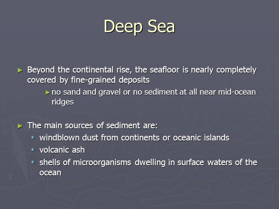 Deep Sea Beyond the continental rise, the seafloor is nearly completely covered by fine-grained deposits.