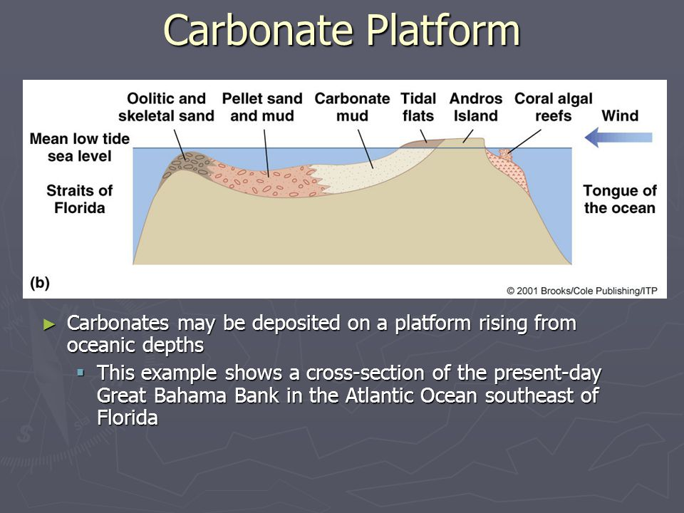 Carbonate Platform Carbonates may be deposited on a platform rising from oceanic depths.