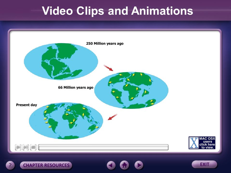 Video Clips and Animations