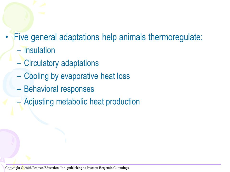 Five general adaptations help animals thermoregulate: