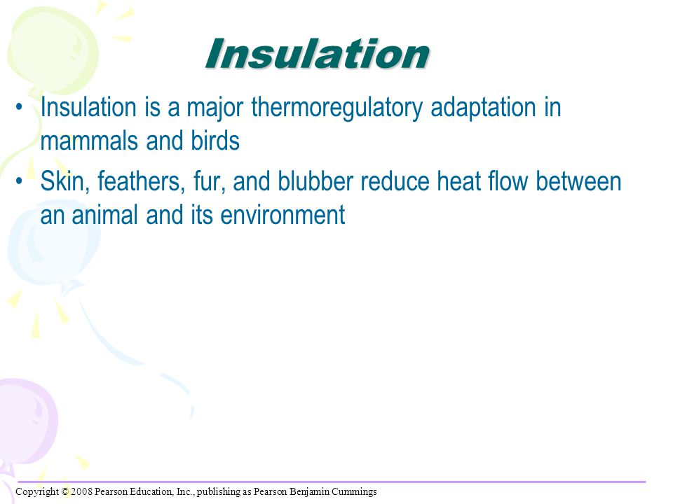 Insulation Insulation is a major thermoregulatory adaptation in mammals and birds.