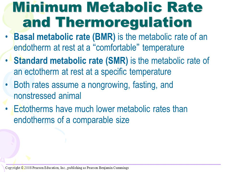 Minimum Metabolic Rate and Thermoregulation