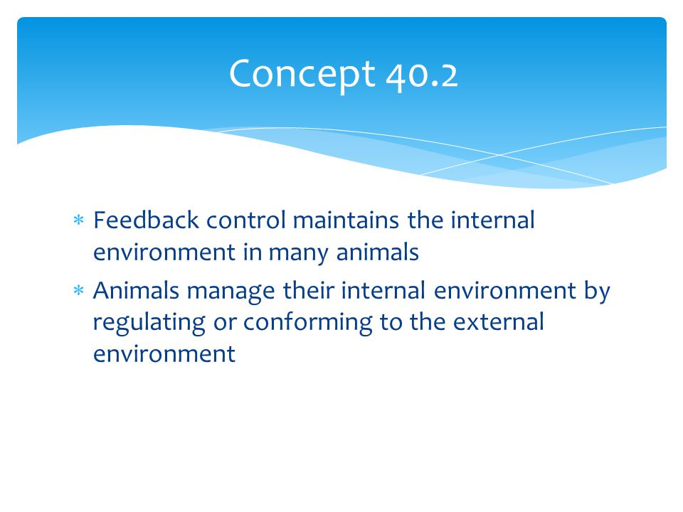 Concept 40.2 Feedback control maintains the internal environment in many animals.