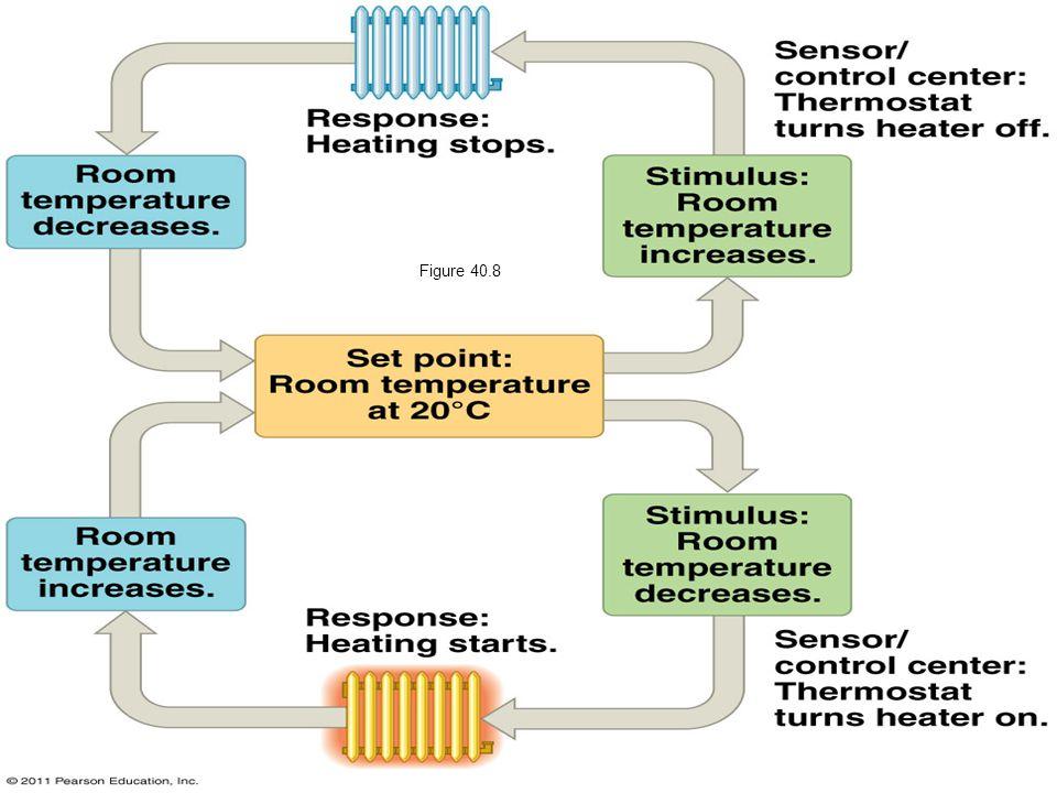 Figure 40.8 Figure 40.8 A nonliving example of temperature regulation: control of room temperature.