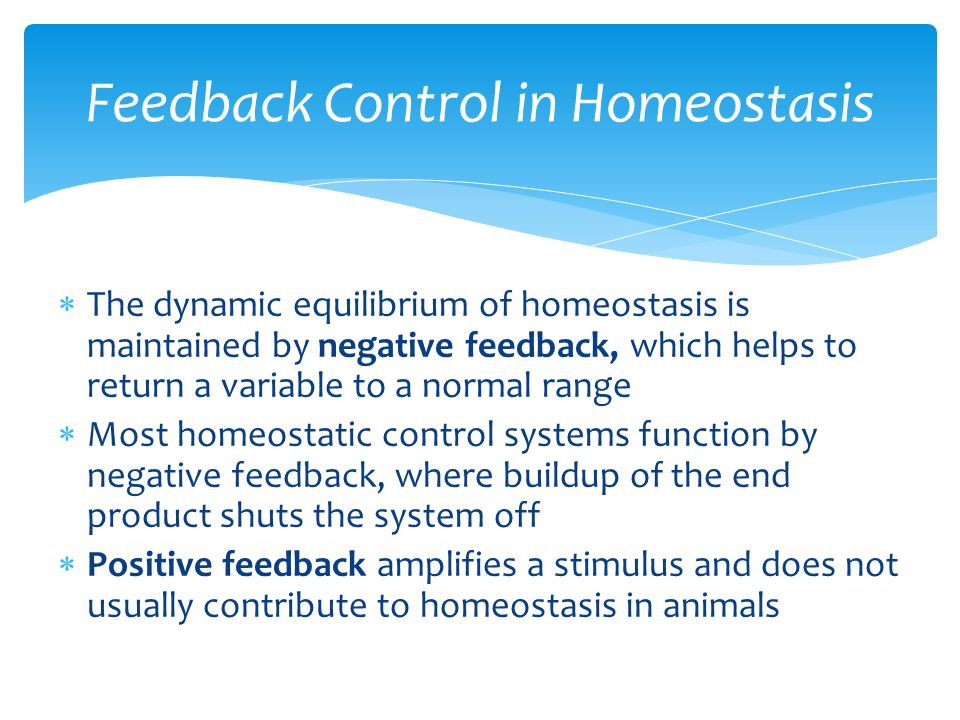 Feedback Control in Homeostasis