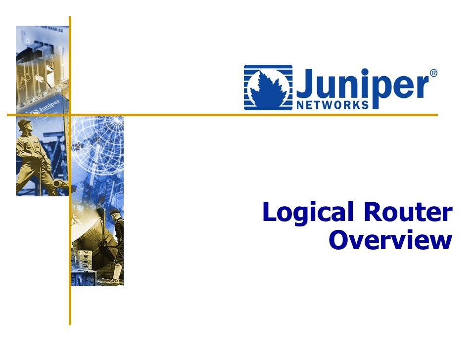 Logical Router Overview