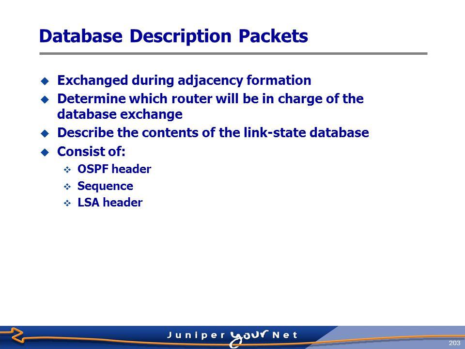 Database Description Packets