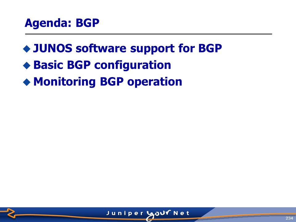 Agenda: BGP JUNOS software support for BGP Basic BGP configuration Monitoring BGP operation